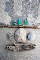 Seashells and driftwood accented by blue stones on grey slabstone.