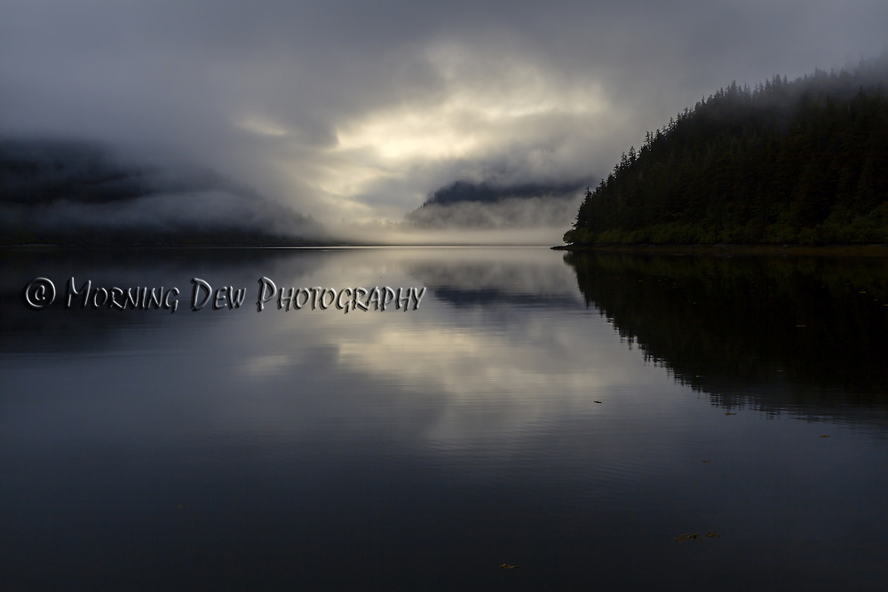 An evening fog rolls in to Fox Farm Bay, Elrington Island, Prince William Sound, Alaska