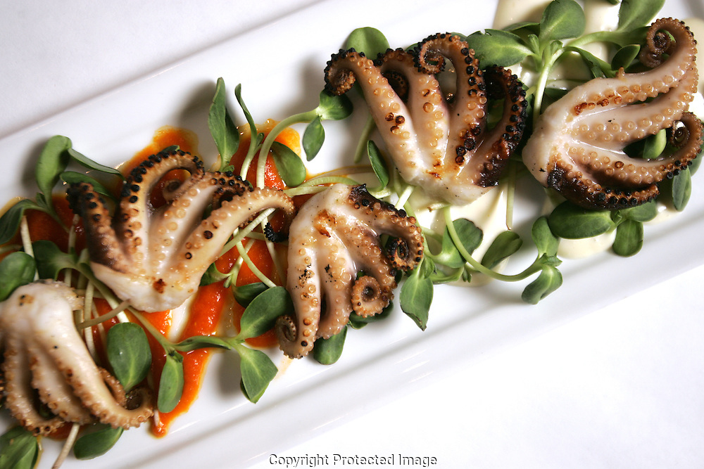 Barcelona Restaurant .Grilled baby octopus bravas.