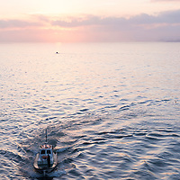 A pilot boat in the Atlantic Ocean at sunrise in the industrial port of Casablanca, Morocco.