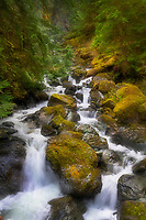 Hidden Creek. Baker Lake Trail, North Cascades Washington