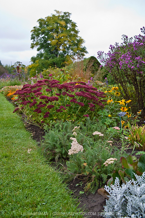 A mixed perennial flower border in autumn continues to show interesting colors and textures.