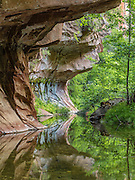 The flow of Oak Creek has slowly eroded away the sandstone, creating numerous 'subways' and half-pipe formations.