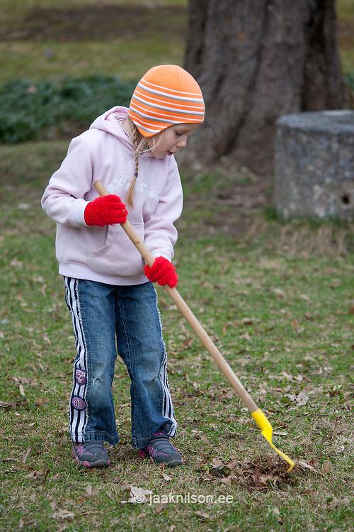 Caucasian Kid Girl Raking Leaves