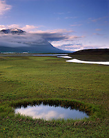 Wetlands along Eyafjurdur near Dalvik Iceland, Europe