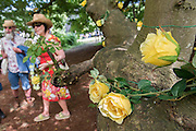 Yellow roses, a symbol of friendship, adorn a tree near the shed of stories as part of the Love thy Neighbour theme.  The tree is enjoyed by couples and child climbers alike -  The 2016 Latitude Festival, Henham Park, Suffolk.