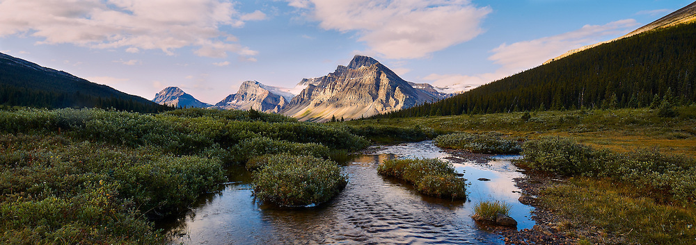 Summer along the Icefields Parkway, August 2015