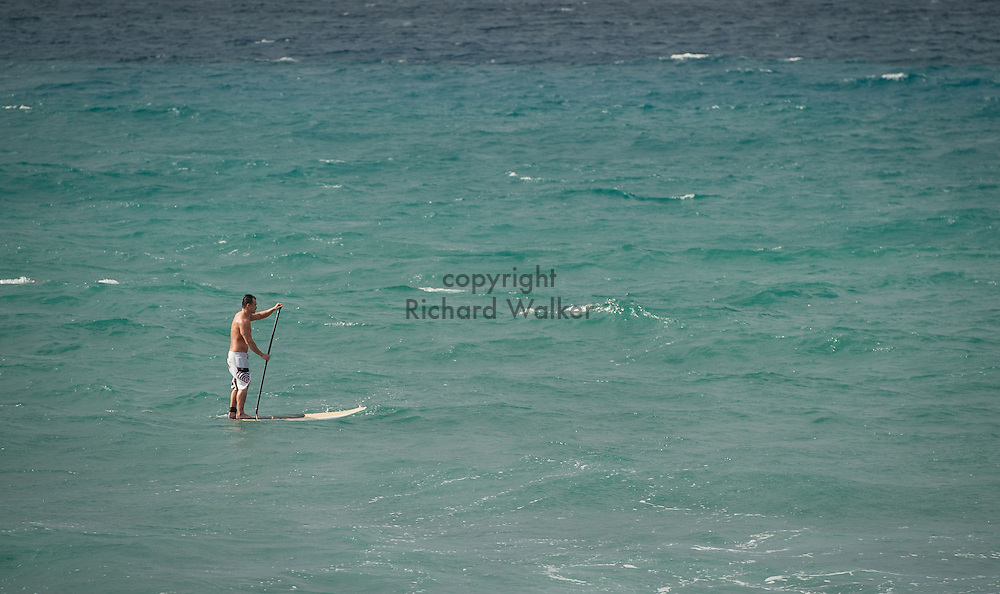 2014 January 25 - A stand-up paddle boarder in the water near Point Panic in Kakaako, Honolulu, HI, USA. By Richard Walker