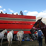 Riders prepare their horses during the 50th Anniversary Glenorchy Race meeting. The races, which originally started in the 1920's, were resurrected in 1962 and have been run by local farmers and the rugby club on the first Saturday after New Years Day ever since. Glenorchy, Otago, New Zealand. 7th January 2012