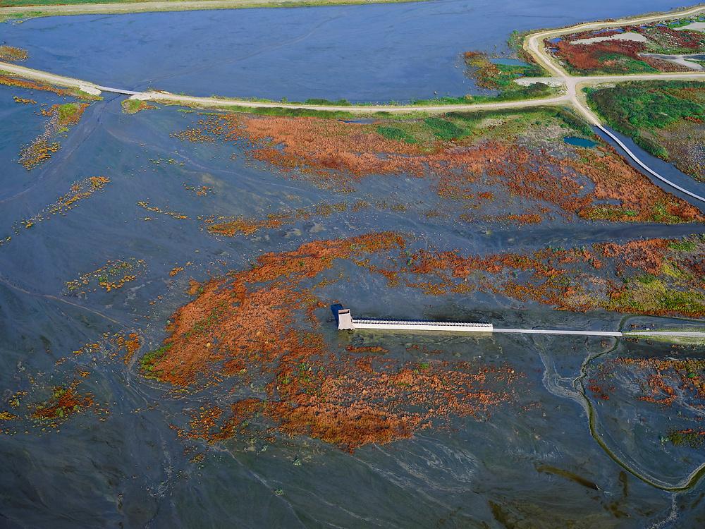 Nederland, Flevoland, Markermeer, 26-08-2019; Marker Wadden in het Markermeer. Vogelkijkhut in het plas dras gebied aan de westkant.<br /> Doel van het project van Natuurmonumenten en Rijkswaterstaat is natuurherstel, met name verbetering van de ecologie in het gebied, in het bijzonder de kwaliteit van bodem en water<br /> Naast het hoofdeiland is er inmiddels een tweede eiland in wording, de uiteindelijk Marker Wadden archipel zal uit vijf eilanden bestaan. <br /> Marker Wadden, artifial islands. The aim of the project is to restore the ecology in the area, in particular the quality of soil and water.<br /> The first phase of the construction, the main island, is finished. <br /> <br /> luchtfoto (toeslag op standard tarieven);<br /> aerial photo (additional fee required);<br /> copyright foto/photo Siebe Swart