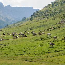 Aragón, Spain