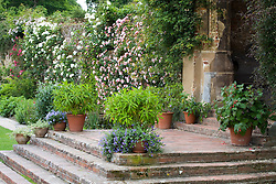 Containers on the steps at the foot of the Tower at Sissinghurst Castle Garden