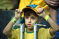 A fan of Brazil during the 2014 FIFA World Cup match at Mineir&atilde;o, Belo Horizonte<br /> Picture by Stefano Gnech/Focus Images Ltd +39 333 1641678<br /> 08/07/2014