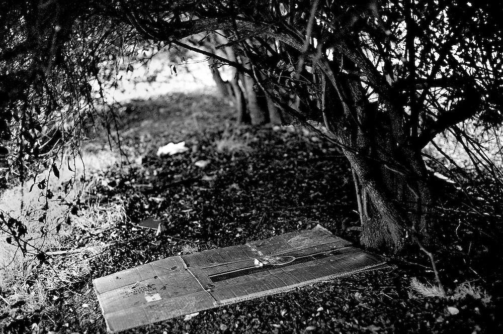 De la serie RASO. Bvar. Artigas proximo a Sarmiento. Camas abajo de los arbustos del cantero de norte de Bvar. Artigas. Montevideo, 01/08/2013.<br /> Foto: Ricardo Antunez <br /> URUGUAY<br /> 2013