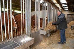 Kluskens Marc, BEL<br /> Stal van 't Roosakker - Sint Gillis Waas 2018<br /> © Hippo Foto - Dirk Caremans<br /> 09/11/2018