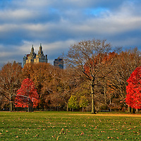 Central Park in the fall New York City Great lawn and San Remo