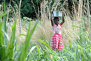 A young girl dressed in pink carries water on her head back from the Lake to the village..Lake Malawi, Malawi, Africa.© Demelza Cloke