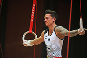 Marcel Nguyen, Germany, on rings during the Arthur Gander Memorial,  Morges, Switzerland on 1 November 2017. Photo by Myriam Cawston.