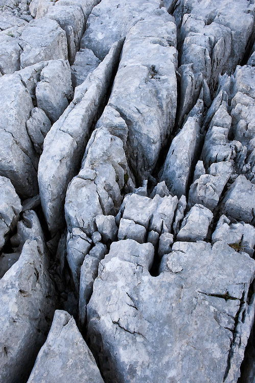 karst formation at the Kriz lakes<br /> Triglav National Park, Slovenia<br /> July 2009