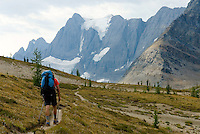 Backpacker at Rockwall Pass Tumbling Glacier is in the distance, Kootenay National Park British Columbia Canada,