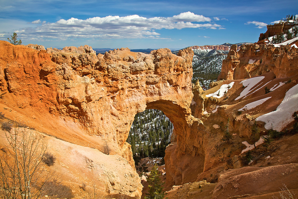 Natural Bridge is an amazing natural bridge in Bryce Canyon National Park. Despite its name, this arch was formed by weathering from rain and freezing, not by stream erosion like a true natural bridge. Once the opening reached ground level, runoff began to enlarge the hole and to dig a gully through it.