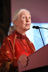 November 10, 2016 - Hong Kong, Hong Kong S.A.R, China - British Conservationist Dame Dr Jane Goodall talks to the guests at the √íHope for Wildlife√ì Gala Dinner to raise awareness for the plight of endangered animals the world over..10th November 2016. Photo by Jayne Russell. (Credit Image: © Jayne Russell via ZUMA Wire)