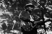 Alt-country trail blazers Wilco returned to Saint Louis, Missouri on May 5th, 2015 at The Pageant to a sold out show in the neighborhood where the band played its first shows 20 years ago.