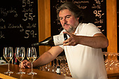 Czech Republic - Brno & Southern Moravia wine