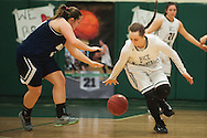 Rice's Lisa Sulejmani (14) steals the ball from Burlington's Makayla King (12) during the girls basketball game between the Burlington Sea Horses and the Rice Green knights at Rice Memorial high school on Thursday night February 18, 2016 in South Burlington. (BRIAN JENKINS/for the FREE PRESS)