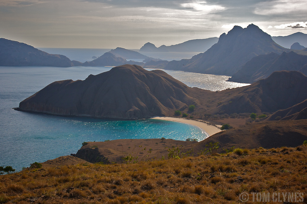 Padar and Komodo Islands in remote Komodo National Park in Indonesia. The park draws adventurous travelers hoping to see the carnivorous Komodo dragon (Varanus komodoensis), the world's largest monitor lizard, in the wild. Several human fatailities have resulted from komodo dragon attacks in recent years.