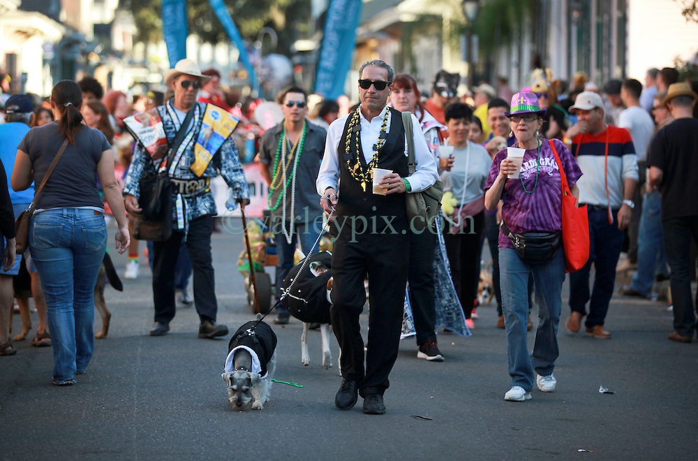 08 Feb 2015. New Orleans, Louisiana.<br /> Mardi Gras. The Mystic Krewe of Barkus takes to the streets of the French Quarter with the theme 'Bark Wars: Return of the K-9.' Barkus is the only officially licensed Mardi Gras krewe by and for canines. <br /> Photo; Charlie Varley/varleypix.com