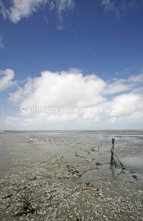 Tide's out at Eighty Mile Beach in the Kimberley Wet Season.
