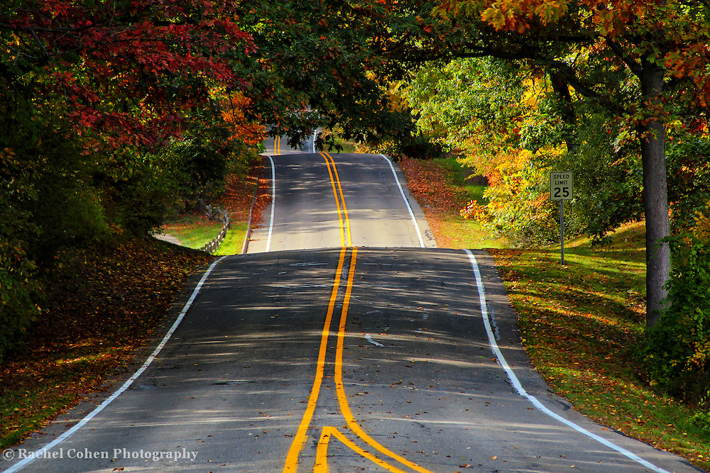 &quot;Two Roads Converge&quot;<br />
