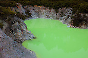Suspended sulphur is responsible for the bright green color of the Devil's Bath, an eruption crater lake located in the Wai-O-Tapu Thermal Wonderland near Rotorua, New Zealand.