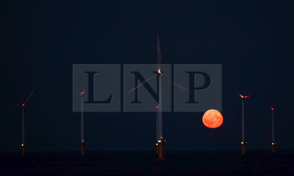 © Licensed to London News Pictures. <br /> 17/09/2016. <br /> REDCAR, UK.  <br /> The Harvest moon creeps over the horizon beyond the EDF energy wind farm near Redcar in Cleveland earlier this evening.<br /> <br /> Photo credit: Ian Forsyth/LNP