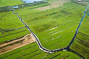 Nederland, Overijssel, Giethoorn, 27-08-2013;<br /> Weide en voormalig veengebied tussen Giethoorn en Steenwijk. <br /> Meadow and or form peat lands (East Netherlands).<br /> luchtfoto (toeslag op standaard tarieven);<br /> aerial photo (additional fee required);<br /> copyright foto/photo Siebe Swart.