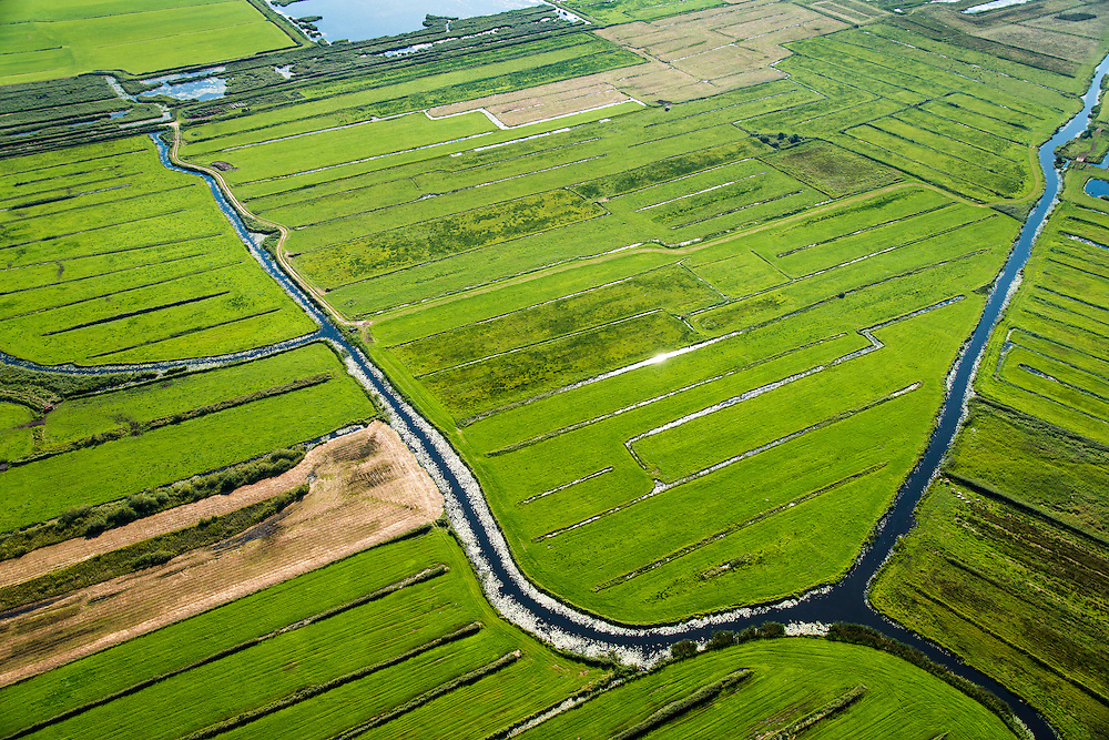 Nederland, Overijssel, Giethoorn, 27-08-2013;<br /> Weide en voormalig veengebied tussen Giethoorn en Steenwijk. <br /> Meadow and or form peat lands (East Netherlands).<br /> luchtfoto (toeslag op standaard tarieven);<br /> aerial photo (additional fee required);<br /> copyright foto/photo Siebe Swart.