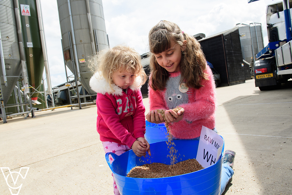 As part of Open Farm Sunday, May Park's Barr Farm in Billinghay, Lincolnshire, was open to the public.  Pictured is Brooke Conway (three) with her sister Scarlett (eight) looking at the feed<br /> <br /> PIcture: Chris Vaughan Photography<br /> Date: May 21, 2017