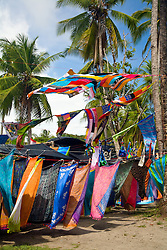 Manuel Antonio National Park, Puntarenas province, Costa Rica: Nature and souvenir vendors vie for attention along Northern Espadilla Beach, immediately outside the entrance to the national park.