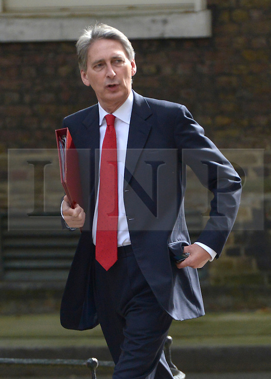 © Licensed to London News Pictures. 10/07/2012. Westminster, UK . Secretary of State for Defence PHILIP HAMMOND. Politicians in Downing Street today 10th July 2012. Photo credit : Stephen Simpson/LNP