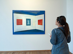 Woman looking at Painting on the Flag by Rene Daniels at Bonnefanten Museum in Maastricht , Limburg , The Netherlands