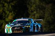 October 11-13, 2018: IMSA Weathertech Series, Petit Le Mans: 29 Montaplast by Land Motorsport, Audi R8 LMS GT3, Sheldon van der Linde, Christopher Mies
