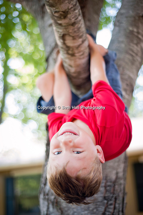 A 5-year-old boy hangs upside down from a tree branch.