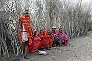 Maasai tribesmen Maasai is an ethnic group of semi-nomadic people. Photographed in Kenya