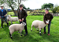 © Licensed to London News Pictures.26/08/15<br /> Egton, UK. <br /> <br /> Three boys wait with their sheep during the 126th Egton Show in North Yorkshire. <br /> <br /> Egton is one of the largest village shows in the country and is run by a band of voluntary helpers. <br /> <br /> This year the event featured wrought iron and farrier displays, a farmers market, plus horse, cattle, sheep, goat, ferret, fur and feather classes. There was also bee keeping, produce and handicrafts on display.<br /> <br /> Photo credit : Ian Forsyth/LNP