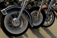 A detail shot of Harley Davidson bikes park along the lake front Friday Aug. 29, 2003 Milwaukee. Thousands of Harley Davidson bikers from all over the world came to Wisconsin to help celebrate Harley Davidson 100th anniversary.   photo by Darren Hauck