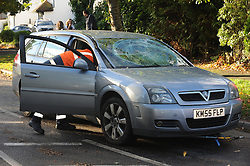 © Licensed to London News Pictures. 28/10/2013<br /> Damage to Mr Grovers car.<br /> Storm Damage today (28.10.2013)<br /> Malcolm Grover from Biggin Hill,Kent was driving his car under this tree on Chilshurst Road, Orpington at 6.30AM this morning, He is very lucky to be alive.  (photographer has his mobile number)<br /> A Tree across Chislehurst Road,Orpington,Greater London<br /> due to storm St Jude.<br /> Photo credit :Grant Falvey/LNP