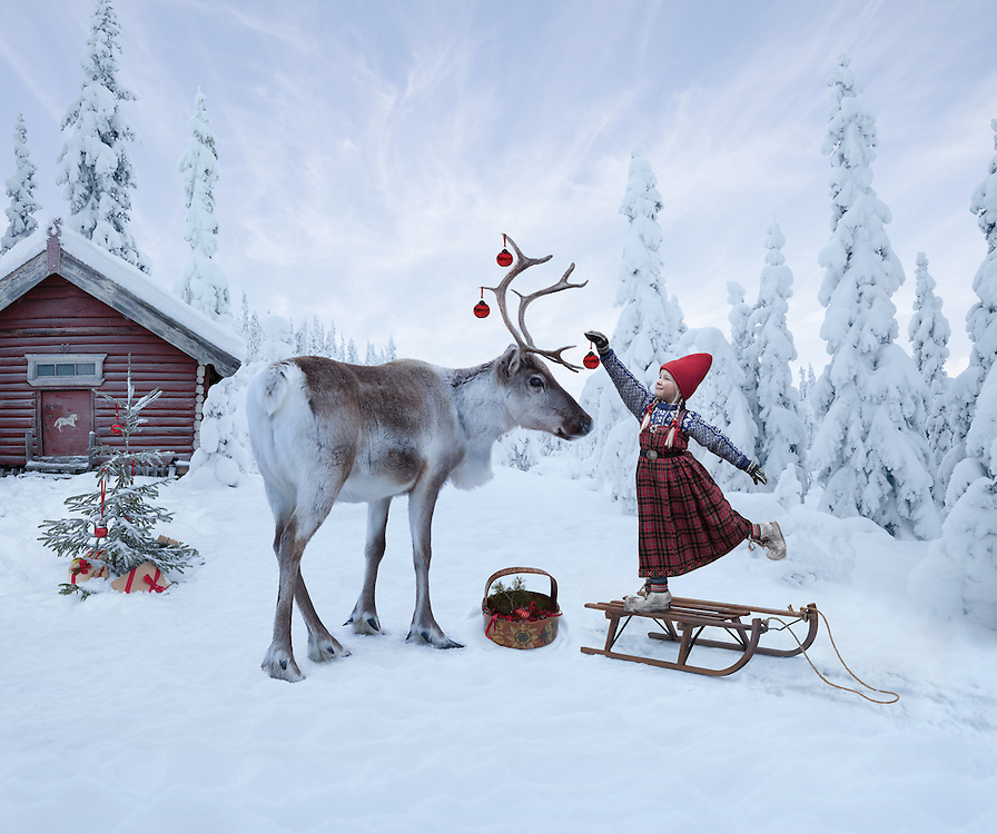 THE REINDEER WISH<br />