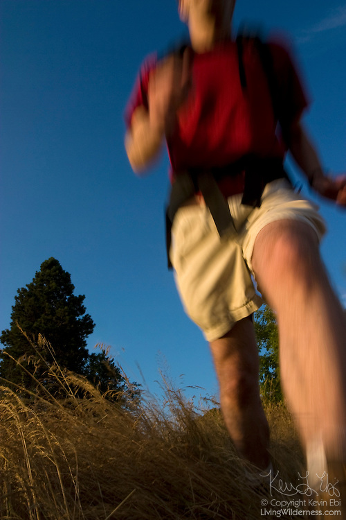 A hiker runs on a trail in Discovery Park, Seattle.