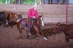 September 23, 2017 - Minshall Farm Cutting 5, held at Minshall Farms, Hillsburgh Ontario. The event was put on by the Ontario Cutting Horse Association. Riding in the $35,000 Non-Pro Class is David Hamilton on Cat Powered owned by the rider.